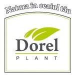 Dorel Plant in Romania