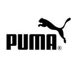 Puma in Romania